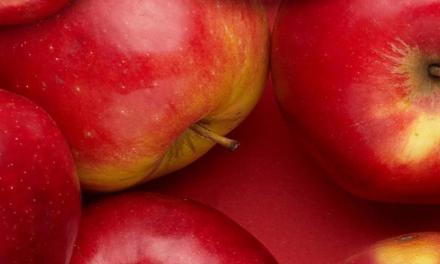 Szakmai megbeszélés: almatermesztéssel és a nemzetközi piaci helyzettel kapcsolatban