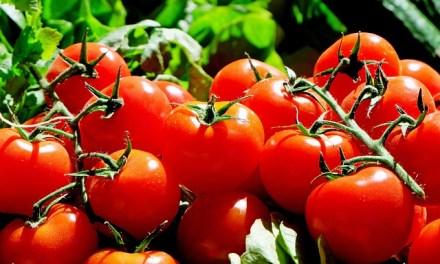 Nagyot nőttek a mezőgazdasági termelői árak