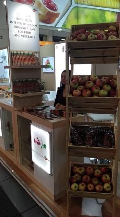 fruit-logistica-beszamolo3