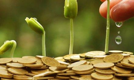 Az utolsó finanszírozási békeévben a hazai agrárium