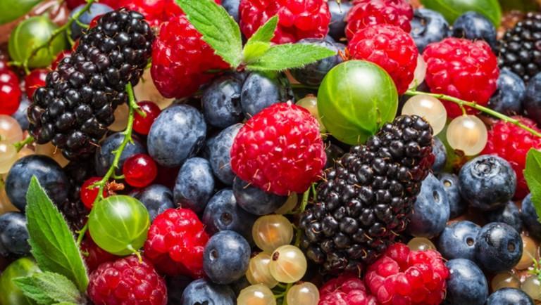 Hollandia a gyümölcstermesztés és -export jelentős fejlesztését tervezi
