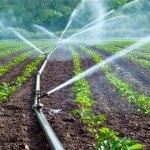 Rendkívüli öntözési célú vízhasználat a mezőgazdasági termelőknek
