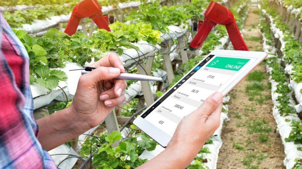 Az agrár-tanácsadási szolgáltatást igénylő mezőgazdasági termelők eligazodását segíti a megújuló szaktanácsadói névjegyzék