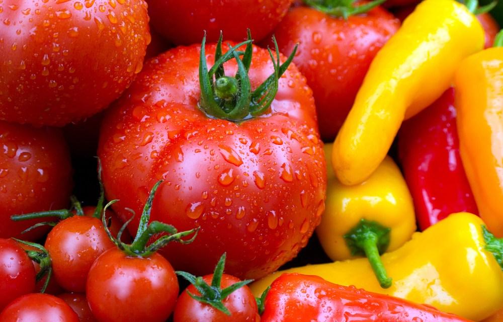 A zöldségágazat helyzetértékelése 2019. július 18.