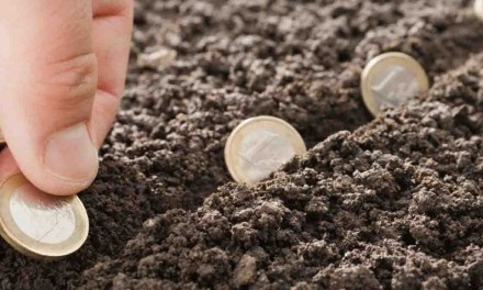 Bővül az agrárberuházások támogatása