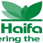 Motti Levin, a Haifa Group vezérigazgatójának üzenete a magyar termelőkhöz és kereskedőkhöz