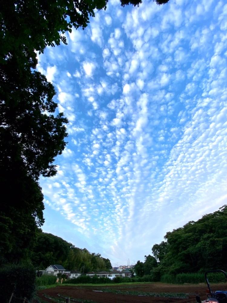 2021夏至 空 雲