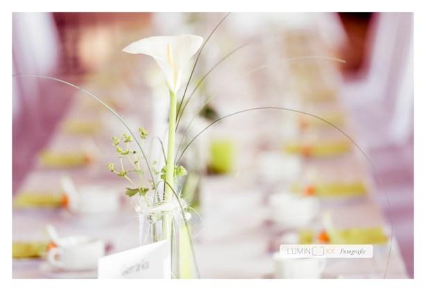 weddingportraits8274