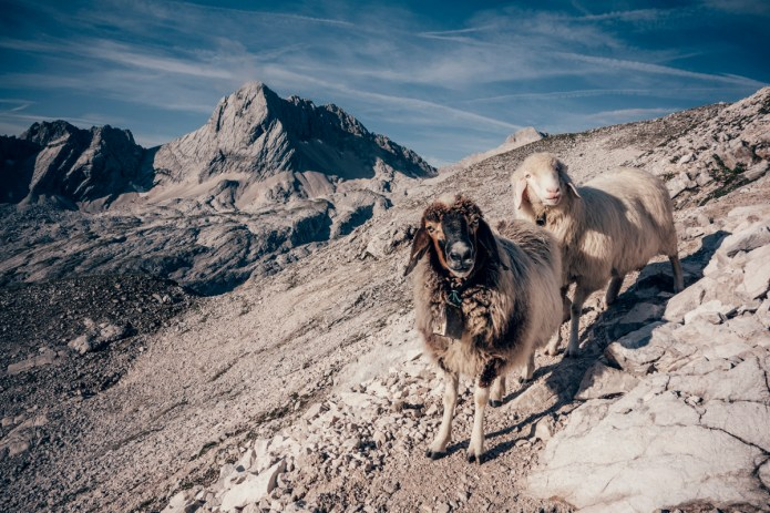 Zugspitze Tour AUG 2014-18