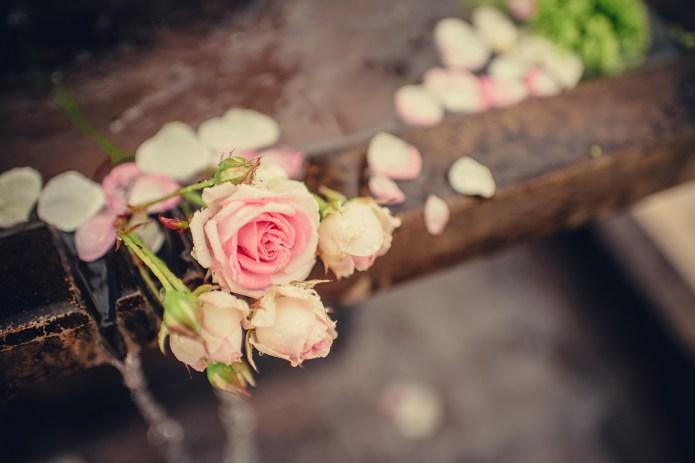 weddingmay5384520715155