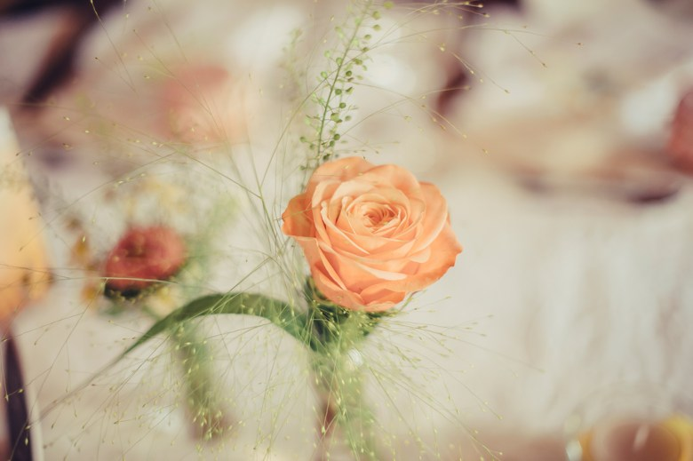 weddingaugust9248523509161522