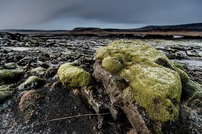 icelandfrumoltphotography201561