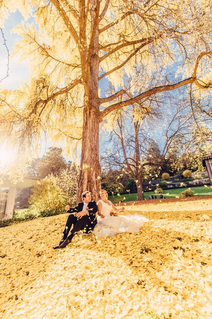 weddingportraitsnov92385212031518