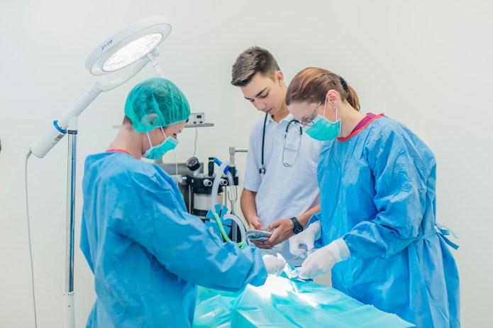 tierarztpraxisweinstadt92458345238