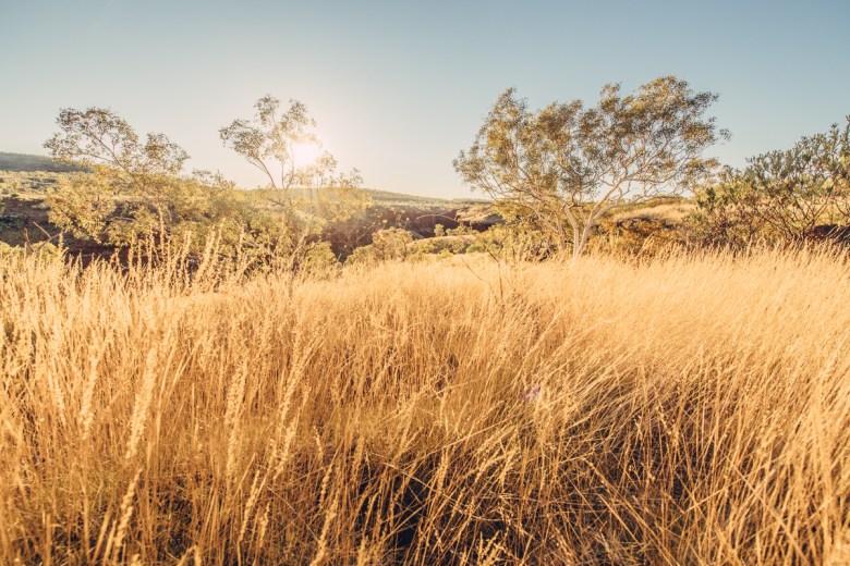 westaustralia_small_size_copyright_frumoltphotography2331-179