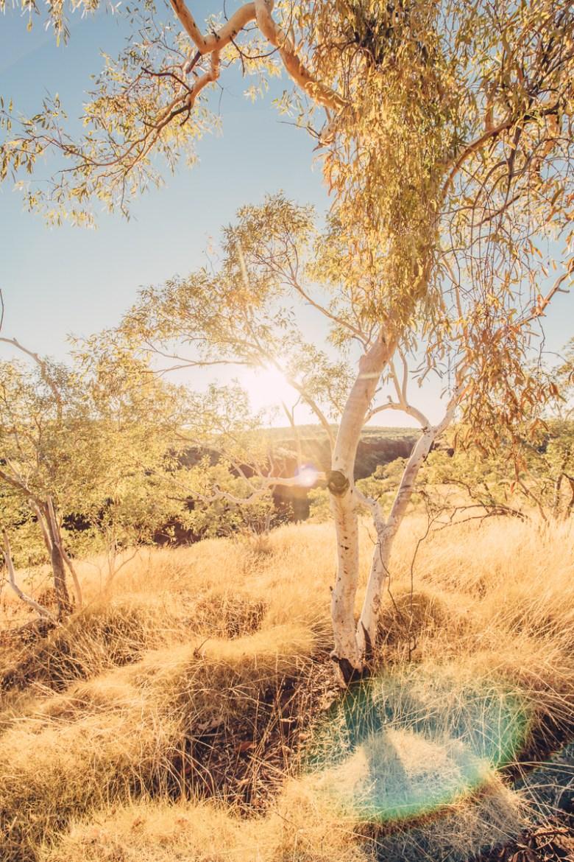 westaustralia_small_size_copyright_frumoltphotography2331-188