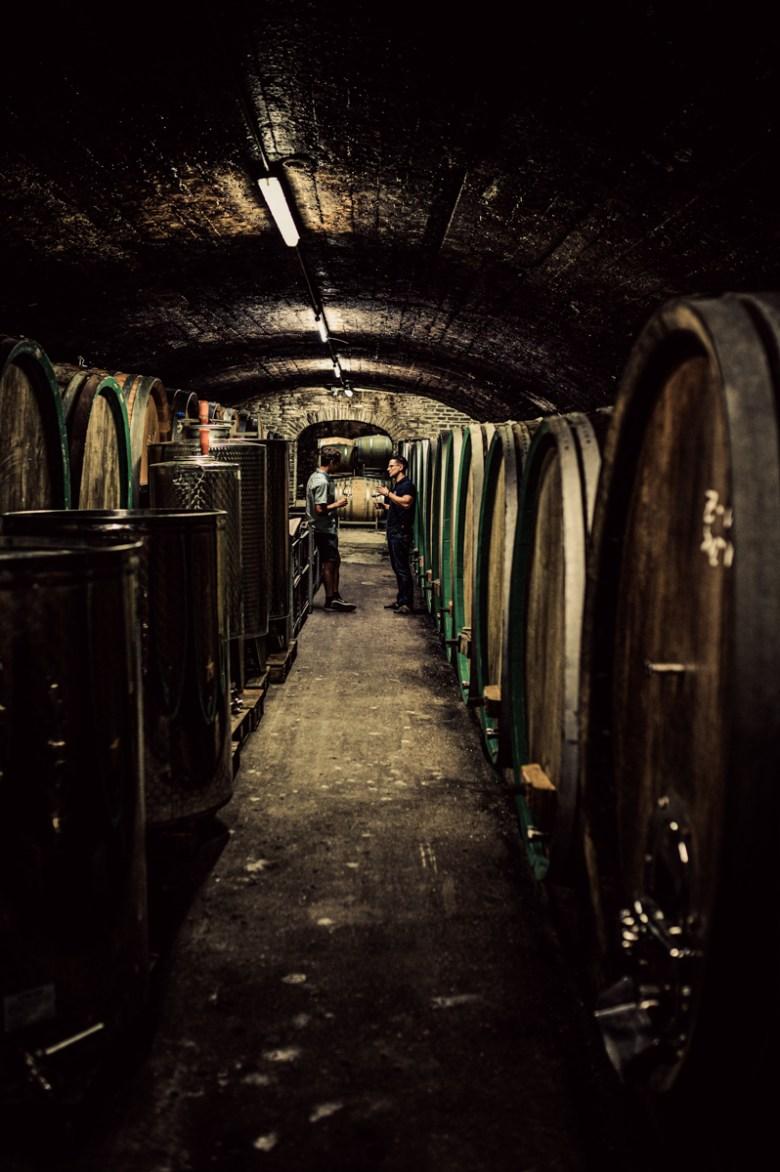 German Wine Tour frumolt photography small size-62