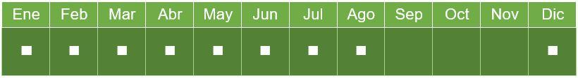 calendario_mango_aire