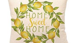 Home Sweet Home Lemon Wreath Throw Pillow Cover