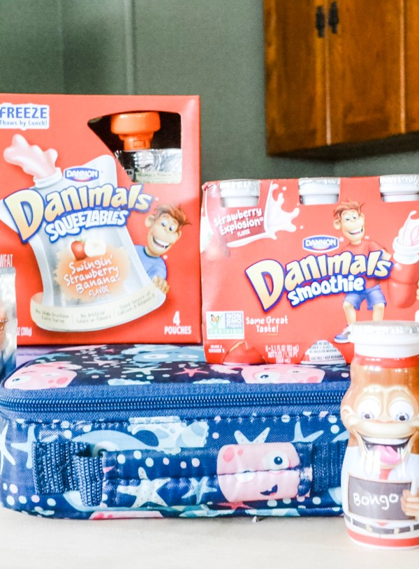 Back to School with Danimals   What's in Your Kid's Lunchbox?