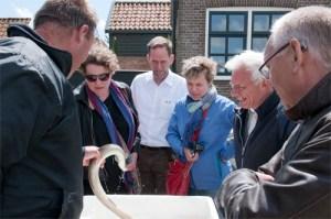 Andries van Netten uit Gaastmeer vertelt over de Friese paling.