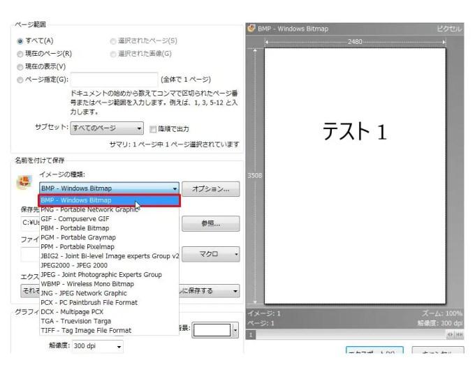[名前を付けて保存] グループの [イメージの種類] コンボ ボックスリストの [BMP - Windows Bitmap] をクリックします。