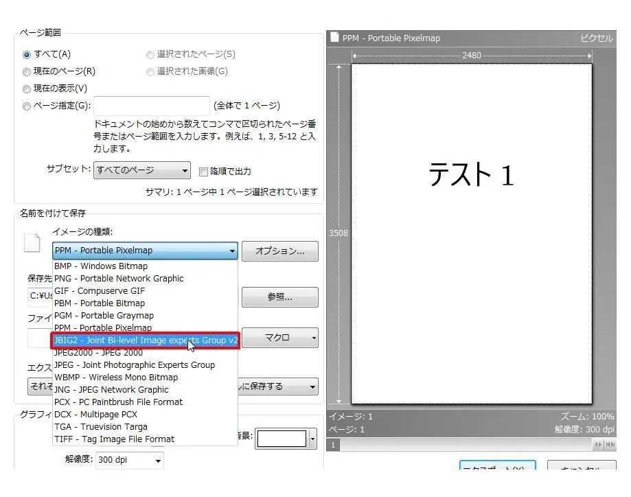 [名前を付けて保存] グループの [イメージの種類] コンボ ボックスリストの [JBIG2 - Joint Bi-level Image experts Group v2] をクリックします。