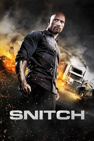 Snitch 2013 Dual Audio Hindi BluRay 350MB 480p ESubs