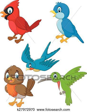 卡通, 鳥, 彙整, 集合 剪圖Clipart   k27972970   Fotosearch