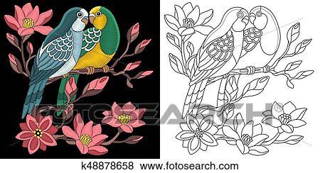刺繡, budgie, 鸚鵡, 設計 美工圖案 | k48878658 | Fotosearch