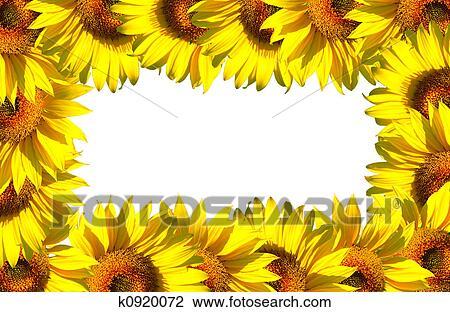 clip art of small sunflower frame