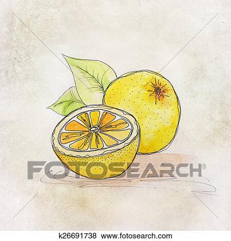 水果. 插圖. 由于. 水彩 影像 | k26691738 | Fotosearch