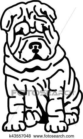 Clip Art  shar pei con lotti di rughe k43557048