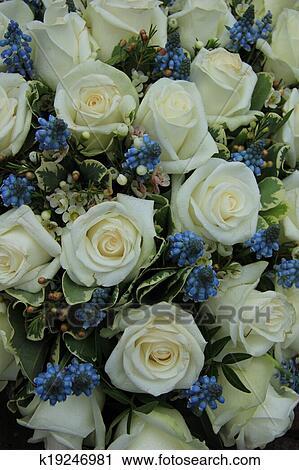 Stock Fotografie  blau wei hochzeitsblumen k19246981  Suche Stockfotos Fotos Prints