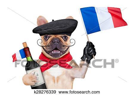 Stock Fotograf  franzsischer wein hund k28276339