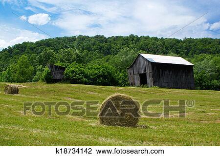 farm with barn and