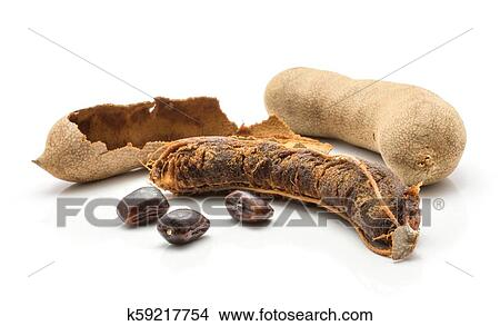 Tamarind fruit isolated on white Picture | k59217754 | Fotosearch