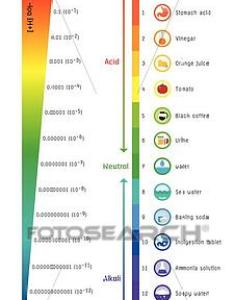 Clipart the ph scale universal indicator color chart diagram fotosearch search clip also of rh