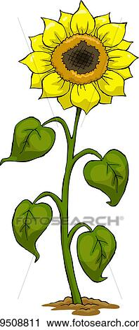 剪圖Clipart - 向日葵 k9508811 - 搜尋美工圖片、插圖壁畫、圖示和向量 EPS 圖像 - k9508811.eps