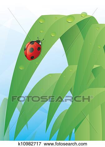 clip art of ladybug leaf k10982717