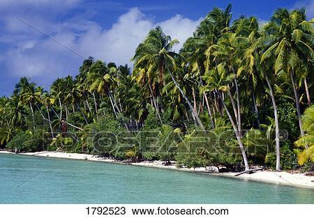 Archivio Fotografico  paesaggio tropicale 1792523  Cerca