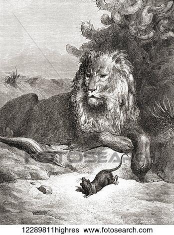 Le Lion Et Le Rat La Fontaine : fontaine, Gustave, Dor's, Illustration, Fontaine's, Fable, Mouse,, Rat)., Century, Edition, Fables, Fontaine., Stock, Photograph, 12289811highres