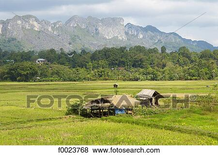 Indonesia. Sulawesi. Tana Toraja Stock Photo   f0023768   Fotosearch