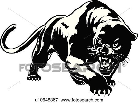 Unc Iphone Wallpaper Clip Art Of Illustration Lineart Animal Panther Cougar