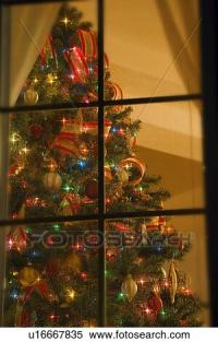 Stock Image of Looking at indoor Christmas tree through ...