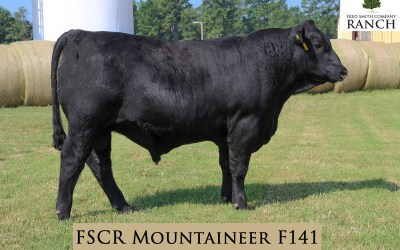 FSCR Mountaineer F141 in the Fall Sale!