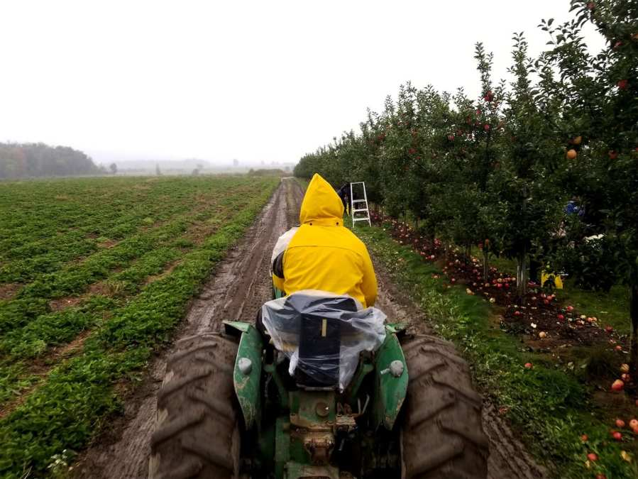 ICYMI: A Fall Harvest, Powered by Field Service