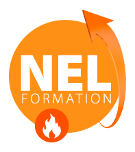 logo_nel_0