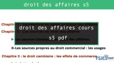 droit des affaires cours s5 pdf