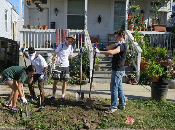 Volunteers planting trees on Dumaine on November 5, 2016